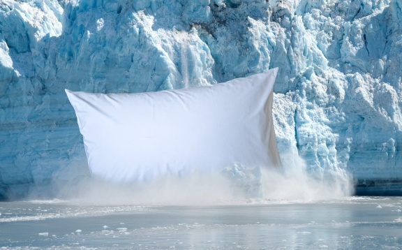 Pillow Case Artic